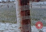 Image of telephone pole Hiroshima Japan, 1946, second 3 stock footage video 65675042132