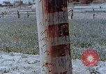 Image of telephone pole Hiroshima Japan, 1946, second 4 stock footage video 65675042132