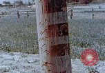 Image of telephone pole Hiroshima Japan, 1946, second 5 stock footage video 65675042132