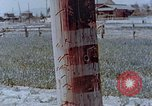 Image of telephone pole Hiroshima Japan, 1946, second 8 stock footage video 65675042132