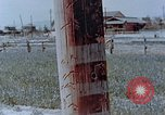 Image of telephone pole Hiroshima Japan, 1946, second 9 stock footage video 65675042132