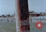 Image of telephone pole Hiroshima Japan, 1946, second 11 stock footage video 65675042132
