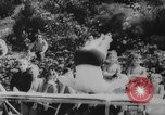 Image of diving competition Germany, 1962, second 11 stock footage video 65675042230