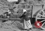 Image of French women tend farms in World War I France, 1917, second 6 stock footage video 65675042483