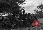 Image of United States Army Field Artillery Battalion of 92nd Infantry Division (colored) Mantes de Gassicourt France, 1944, second 10 stock footage video 65675042598