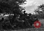 Image of United States Army Field Artillery Battalion of 92nd Infantry Division (colored) Mantes de Gassicourt France, 1944, second 11 stock footage video 65675042598