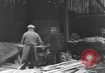 Image of Colonel Damon Gun Germany, 1945, second 12 stock footage video 65675042613