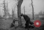 Image of Germans cutting trees for fuel in Berlin after World War 2 Berlin Germany, 1945, second 7 stock footage video 65675042630