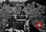 Image of Egyptian workers Hermopolis Egypt, 1930, second 12 stock footage video 65675042733