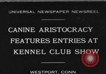 Image of Kennel Club dog show Westport Connecticut USA, 1930, second 1 stock footage video 65675042736