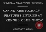 Image of Kennel Club dog show Westport Connecticut USA, 1930, second 8 stock footage video 65675042736