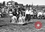 Image of Kennel Club dog show Westport Connecticut USA, 1930, second 11 stock footage video 65675042736