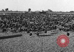 Image of turkeys Pomona California USA, 1934, second 2 stock footage video 65675042750