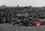 Image of turkeys Pomona California USA, 1934, second 9 stock footage video 65675042750