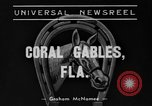 Image of Easiest Way horse Coral Gables Florida USA, 1938, second 3 stock footage video 65675042791
