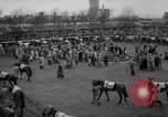Image of Grand National horse race Liverpool England, 1963, second 10 stock footage video 65675042828
