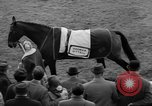 Image of Grand National horse race Liverpool England, 1963, second 11 stock footage video 65675042828