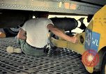 Image of 500lb bombs Vietnam, 1965, second 12 stock footage video 65675042872