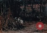 Image of colored smoke grenades United States USA, 1965, second 8 stock footage video 65675042931