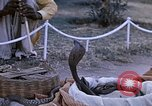Image of Snake charmer India, 1956, second 9 stock footage video 65675043054