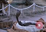 Image of Snake charmer India, 1956, second 10 stock footage video 65675043054