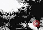 Image of Viet Cong soldiers Vietnam, 1967, second 9 stock footage video 65675043135