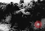 Image of Viet Cong soldiers Vietnam, 1967, second 5 stock footage video 65675043136