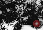 Image of Viet Cong soldiers Vietnam, 1967, second 2 stock footage video 65675043137