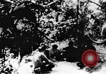 Image of Viet Cong soldiers Vietnam, 1967, second 4 stock footage video 65675043137