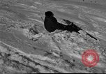 Image of Ski patrolmen Garmisch-Partenkirchen Germany, 1965, second 1 stock footage video 65675043204