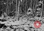 Image of Western Front snow scenes January 1945 in World War II Europe, 1945, second 9 stock footage video 65675043290