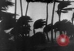Image of Hurricane Florida Keys United States USA, 1935, second 6 stock footage video 65675043317