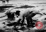 Image of fish farming Dutch Guiana, 1957, second 9 stock footage video 65675043389