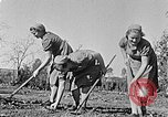 Image of Hitler Youth Poland, 1940, second 4 stock footage video 65675043395