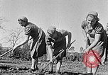 Image of Hitler Youth Poland, 1940, second 6 stock footage video 65675043395