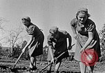 Image of Hitler Youth Poland, 1940, second 7 stock footage video 65675043395