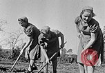 Image of Hitler Youth Poland, 1940, second 8 stock footage video 65675043395