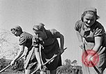 Image of Hitler Youth Poland, 1940, second 11 stock footage video 65675043395