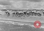 Image of Hitler Youth at beach Poland, 1940, second 8 stock footage video 65675043398