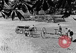 Image of Hitler Youth Poland, 1940, second 5 stock footage video 65675043401