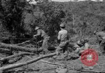 Image of Aggressors troops Vieques Island Puerto Rico, 1950, second 2 stock footage video 65675043404