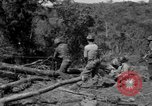 Image of Aggressors troops Vieques Island Puerto Rico, 1950, second 3 stock footage video 65675043404