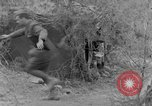 Image of Italian troops Tunisian Front, 1943, second 8 stock footage video 65675043485