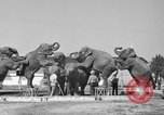 Image of Ringling Brothers Circus Sarasota Florida USA, 1938, second 10 stock footage video 65675043527