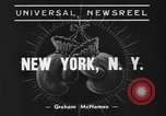 Image of Golden Glove finalists New York United States USA, 1938, second 6 stock footage video 65675043529