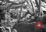 Image of trench camouflage World War 1 France, 1918, second 12 stock footage video 65675043548