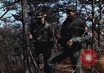 Image of 7th Infantry Division soldiers Korea, 1968, second 5 stock footage video 65675043560