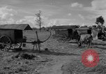 Image of Bullock cart dwellers Phnom Penh Cambodia, 1957, second 6 stock footage video 65675043579