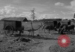 Image of Bullock cart dwellers Phnom Penh Cambodia, 1957, second 7 stock footage video 65675043579