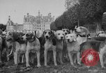Image of Annual Saint Hubert's hunt Compiegne France, 1938, second 5 stock footage video 65675043744